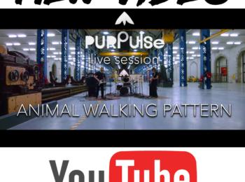 new video de Purpulse qui sera en concert au café-concert Le Centre à Saint Nazaire.
