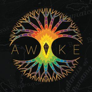 Album Awake of The Roots Ark en concert au Centre à Saint Nazaire.