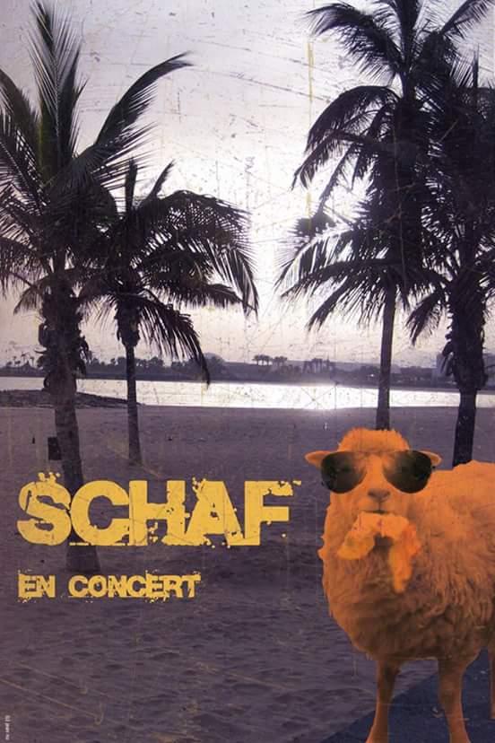 Visuel de Schaf en concert, vendredi 2 mars au café-concert Le Centre à Saint Nazaire.